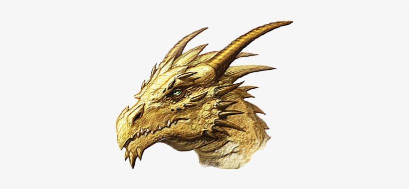 Gold dragon png 5e organon aphorism 82
