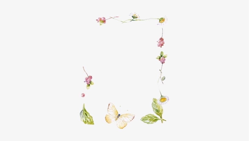 White Flower Border Png Index Of Userstbalzeflowerpng Lotus