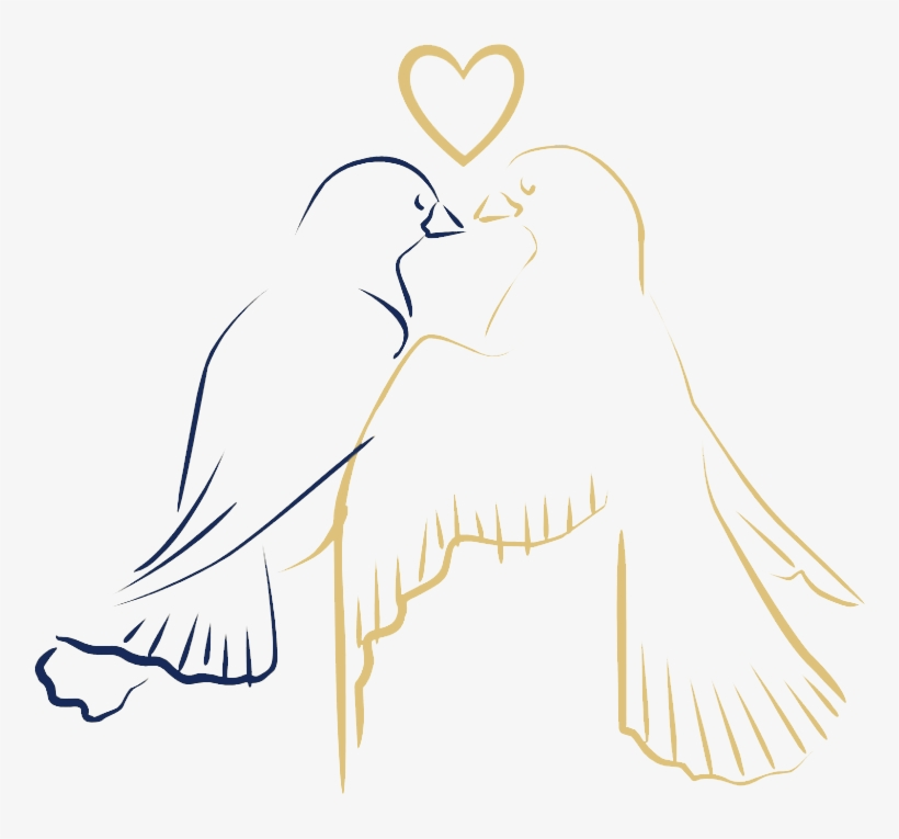 Love Birds Drawing Png Png Image Transparent Png Free Download On Seekpng