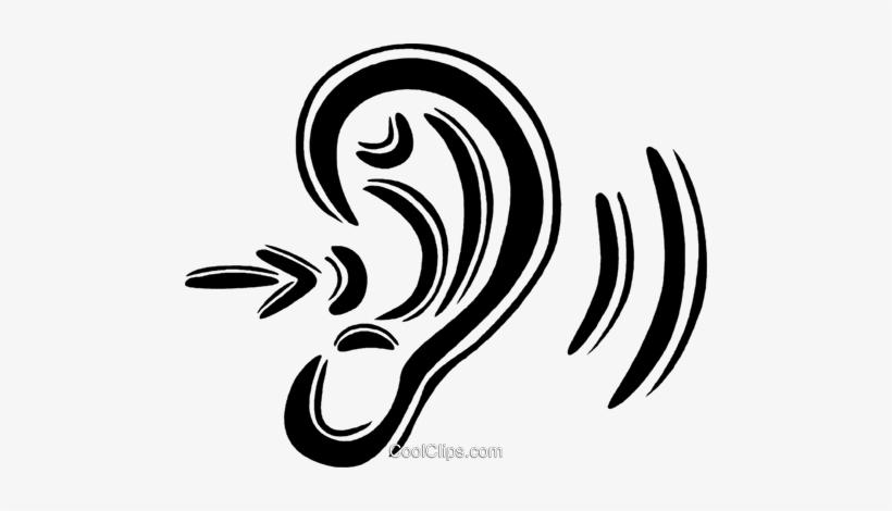 human ear  hearing royalty free vector clip art