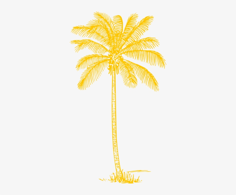 Yellow Palm Tree Clip Art Coconut Tree Clipart Black And White Png