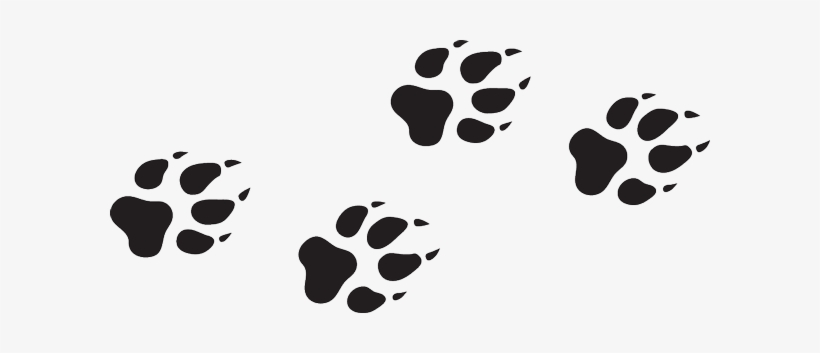 Wolf Paw Print Png Png Image Transparent Png Free Download On Seekpng This is a listing for a instant download for svg, studio3, png files. wolf paw print png png image