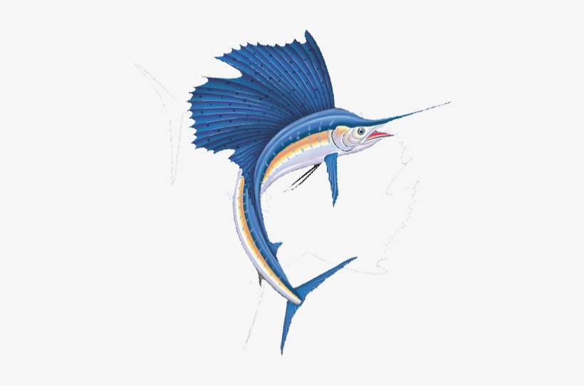 Sailfish 3 - Sailfish Png PNG Image | Transparent PNG Free Download