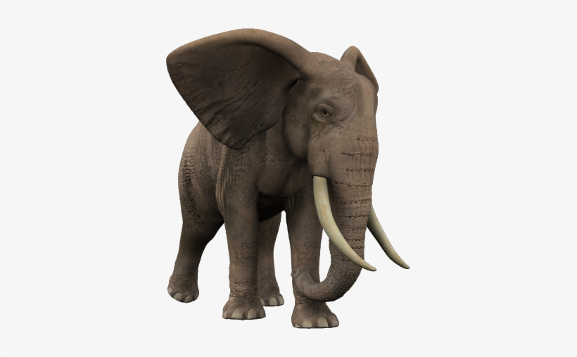 African Jungle African Elephant Png Jungle Elephant Png Png Image Transparent Png Free Download On Seekpng I've always loved nature documentaries. african jungle african elephant png