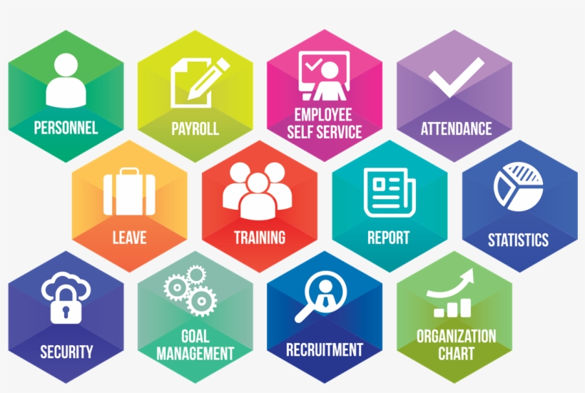 What Is Human Resource Management - Training Institute Management
