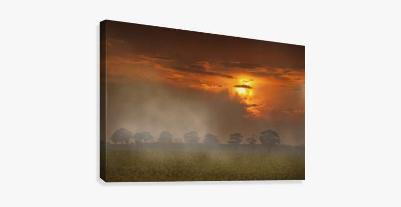 The Red Glow Of A Sunset And Fog Over A Field - Posterazzi
