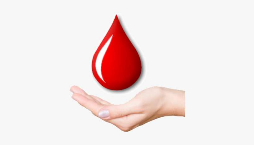 Download Blood Drop In Hand Png Png Gif Base All images and logos are crafted with great workmanship. download blood drop in hand png png
