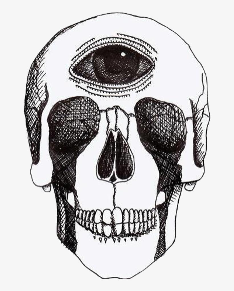 Skulls Tumblr Aesthetic: Thirdeye Alien Rad Tumblr Aesthetic Skull