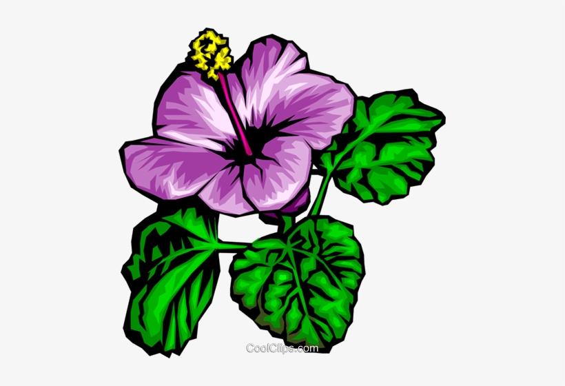 Purple Flowers Royalty Free Vector Clip Art Illustration