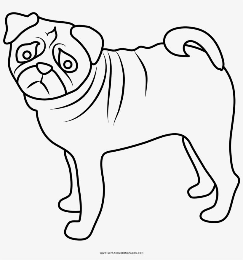 Pug Coloring Page Desenhos Para Colorir Pug Png Image