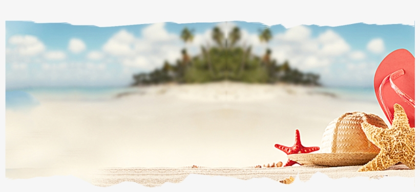 Slider Background Two - Summer Background Banner PNG Image   Transparent  PNG Free Download On SeekPNG