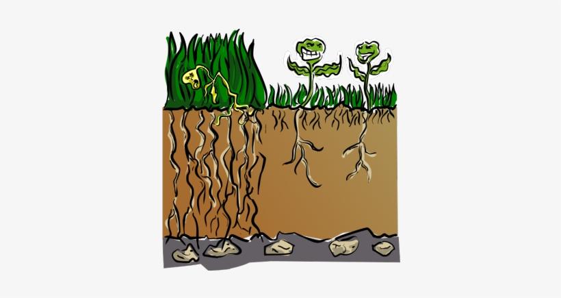 Dry Grass Clip Art