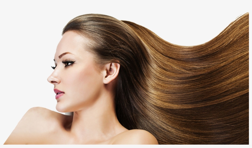 Hair Loss Explanation Jonsson Protein Singapore Lady With Long Hair Png Image Transparent Png Free Download On Seekpng