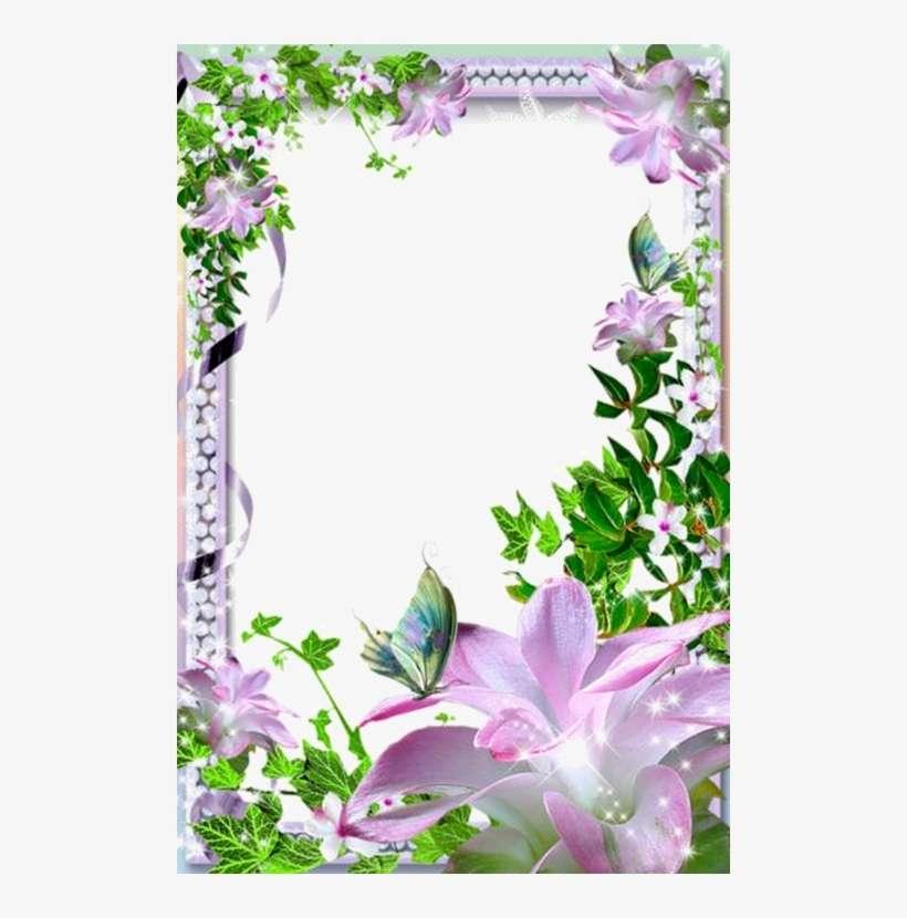 Flower Frame, Borders For Paper, Borders And Frames ...