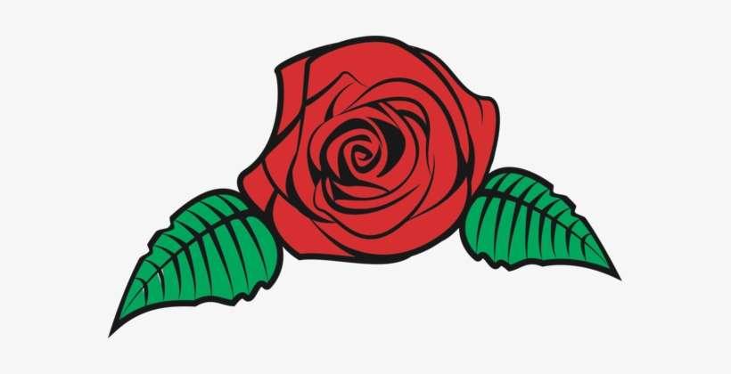 Flower Bouquet Rose Floral Design Drawing Vector Rose Flower Png