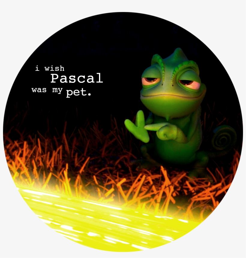 Tangled Tangled Confessions Pascal Tangled Pascal Pet Tangled Healing Incantation Png Image Transparent Png Free Download On Seekpng