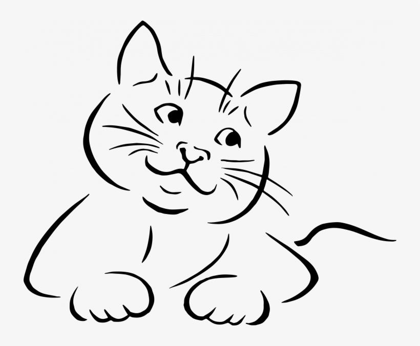 Image of: Face Medium Size Of How To Draw Cute Cartoon Kitten Step Line Art Cat Vector Seekpng Medium Size Of How To Draw Cute Cartoon Kitten Step Line Art Cat