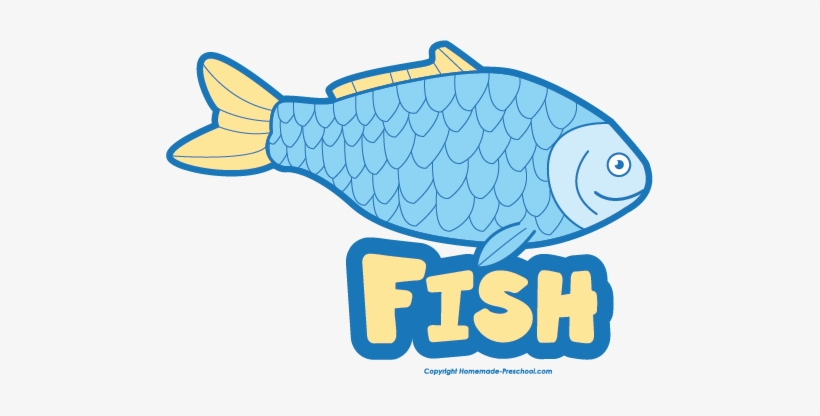 Download Svg Free Download Collection Of Free Fishes Name Download Fish Clipart With Name Png Image Transparent Png Free Download On Seekpng