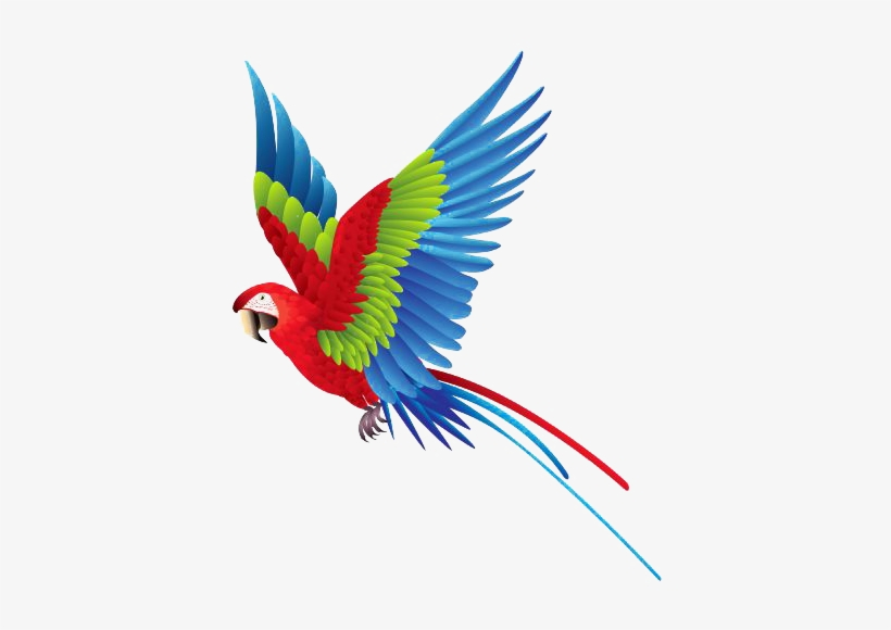 Flying Parrot PNG Images | PNG Cliparts Free Download on ...