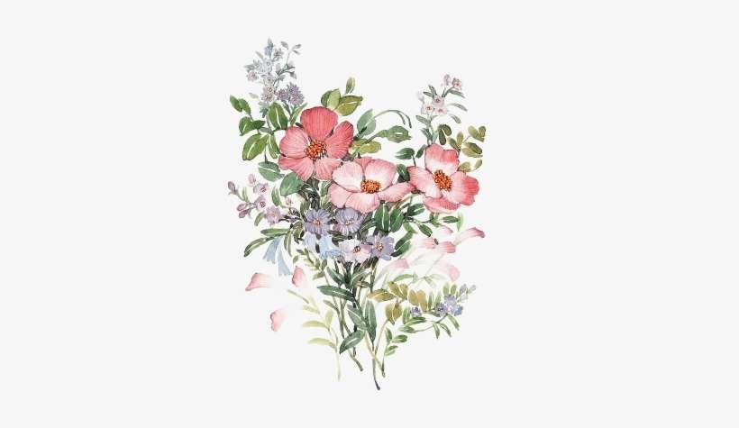 Ladylony Albom Png Tubes Art Flowers Na Yandeks Flores Vitages
