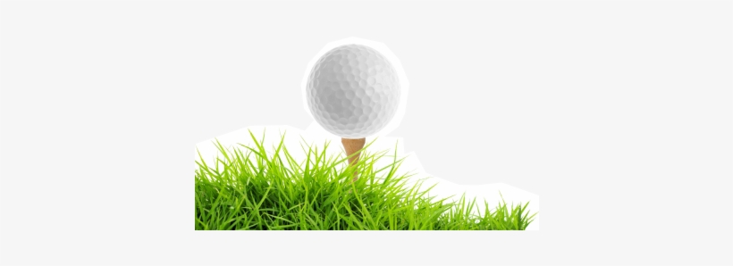 Wonderful Picture Images Transparentpng Golf Ball Tee Png Png Image Transparent Png Free Download On Seekpng