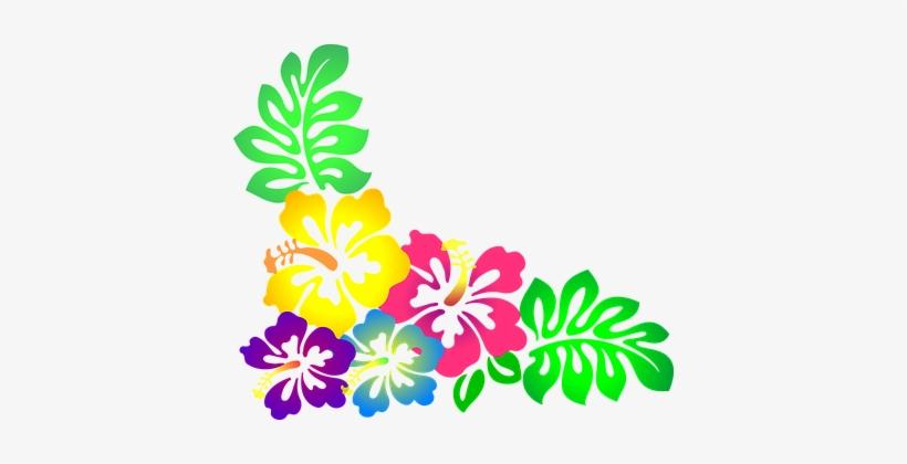 Flower Hawaii Hibiscus Luau Colorful Hawai Clipart Hawaiian