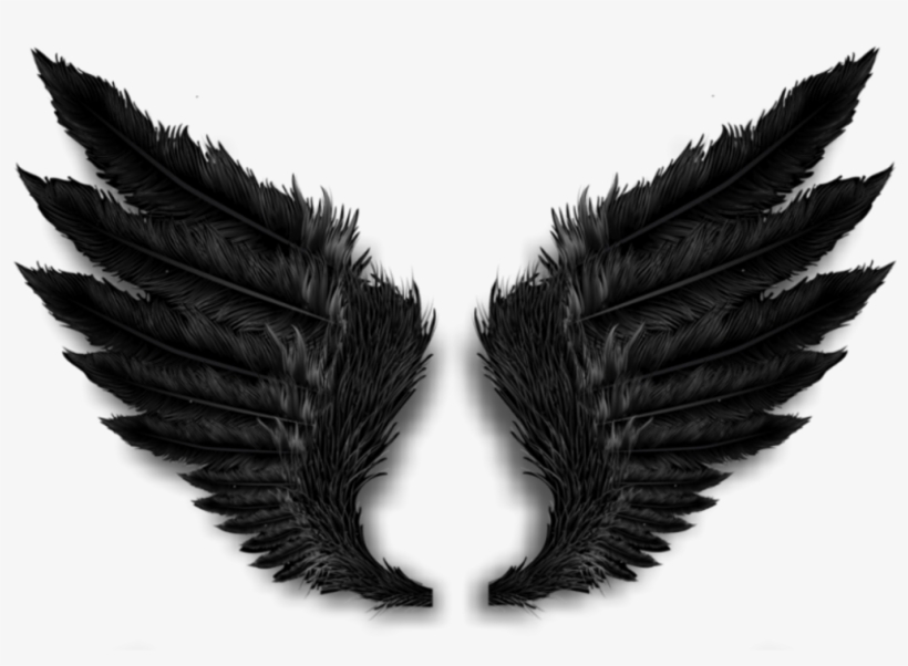 Free Vectors Download Wings Png Transparent Png 1000x1000 Free Download On Nicepng