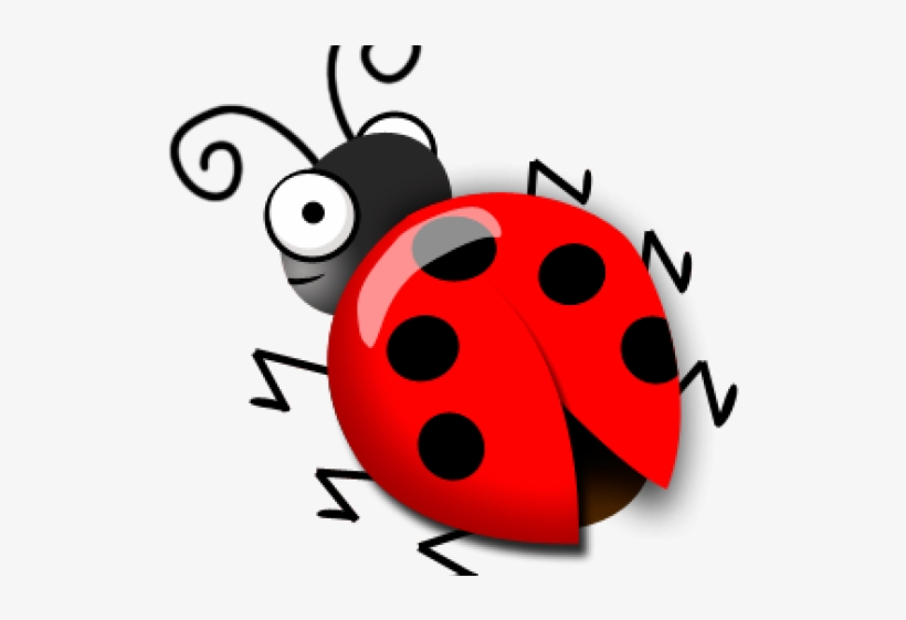 Ladybug Clipart Cute - Ladybug PNG Image Transparent PNG Free Download On  SeekPNG