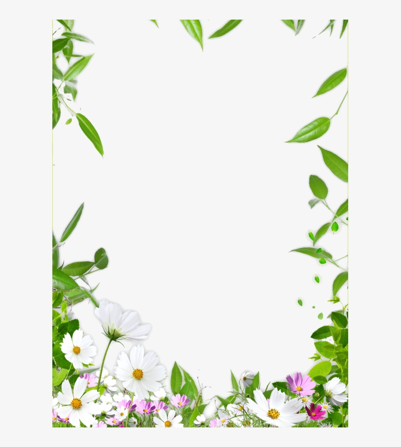 View Nature Frame Border Design