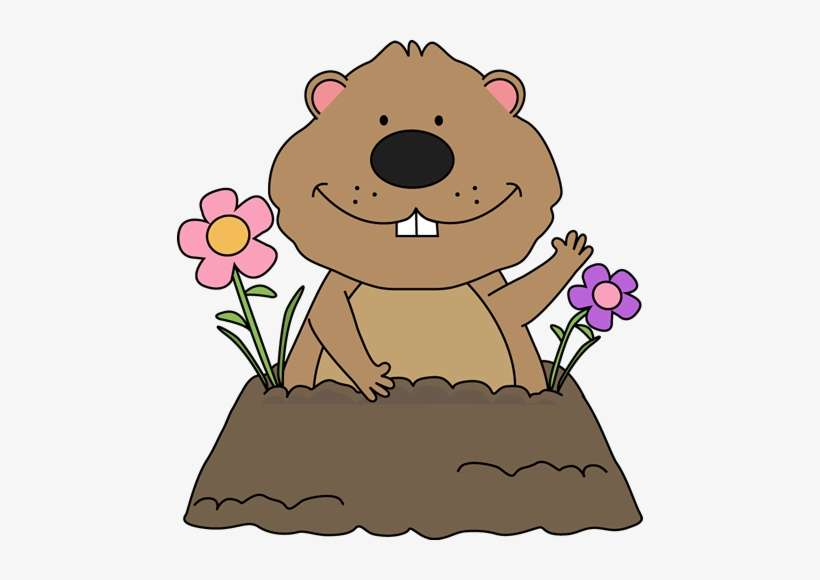 Graphic Transparent Groundhog Pictures Free Free Groundhog Groundhog Day Clipart Png Image Transparent Png Free Download On Seekpng