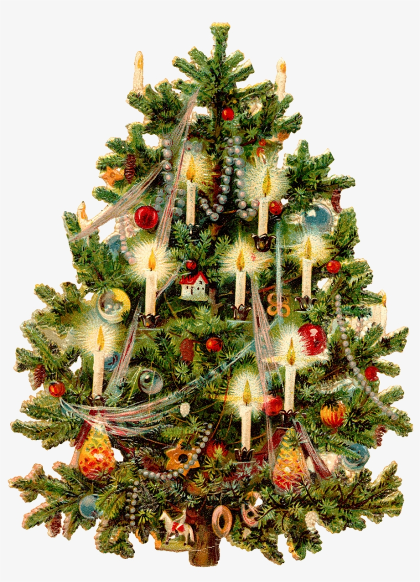 christmas tree free png transparent background images old fashion christmas tree png image transparent png free download on seekpng christmas tree free png transparent
