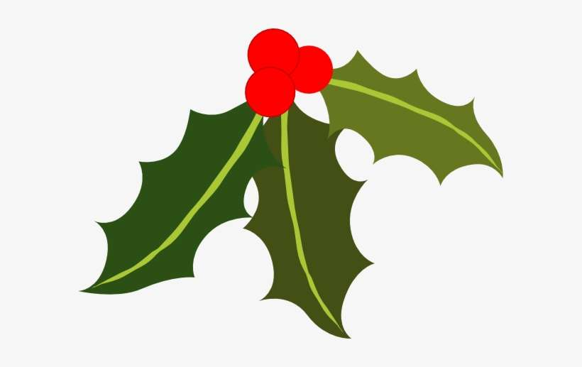 Christmas Holly Clip Art.Christmas Holly Clipart Holly Clip Art Png Png Image