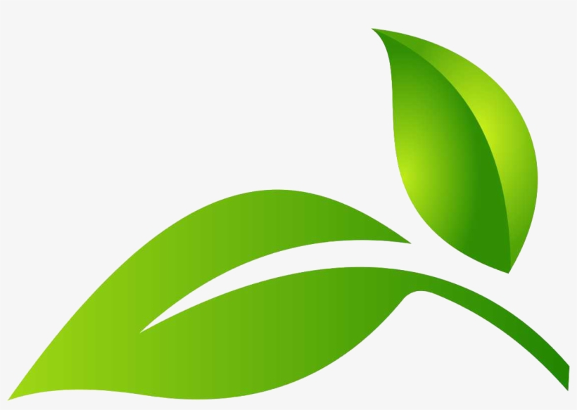 Leaf Logo Green Leaf Png Logo Png Image Transparent Png Free Download On Seekpng All images and logos are crafted with great workmanship. leaf logo green leaf png logo png
