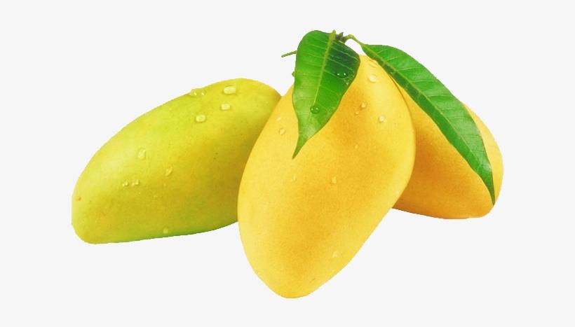 Mango Png Image & Mongo Clipart - Mango Fresh Fruit@seekpng.com
