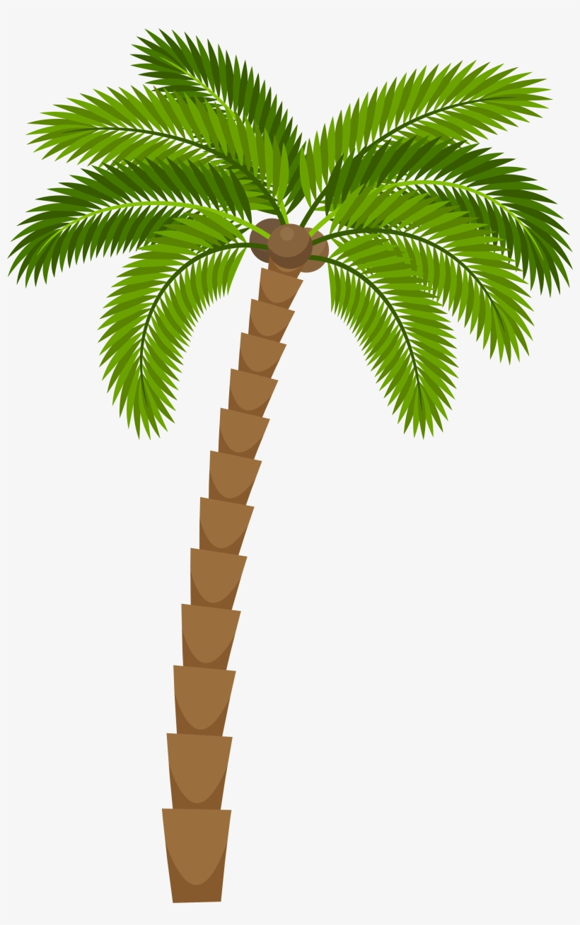 Clipart Leaf Coconut Tree Cartoon Palm Tree Png Png Image Transparent Png Free Download On Seekpng Choose from 1700+ cartoon tree graphic resources and download in the form of png, eps, ai or psd. clipart leaf coconut tree cartoon