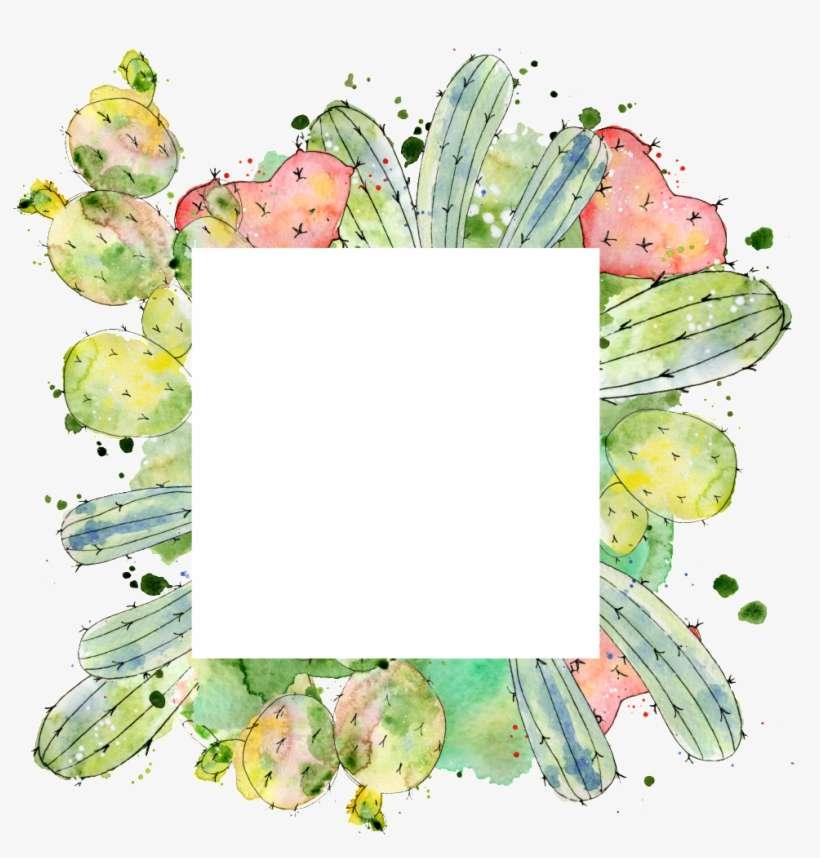 Transparent Of Square Cactus Border Bordes De Cactus Animados Png