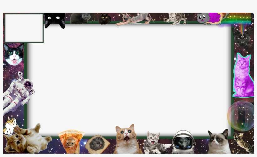Twitch Cat Overlay - Obs Overlay Space PNG Image
