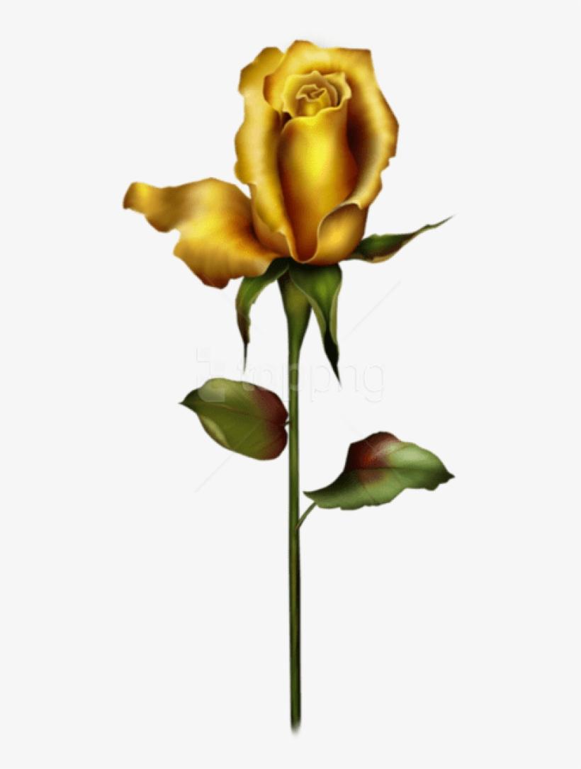 Free Png Download Yellow Rose Bud Png Images Background Long Stem Yellow Rose Tattoos Png Image Transparent Png Free Download On Seekpng