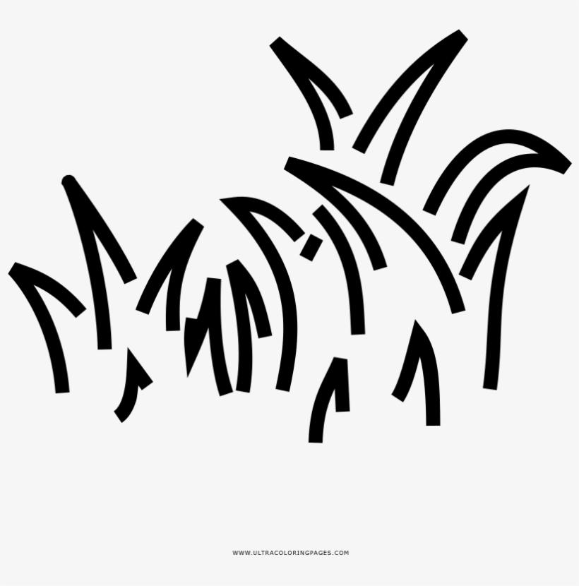 Grass Coloring Page Gambar Lukisan Rumput Png Image