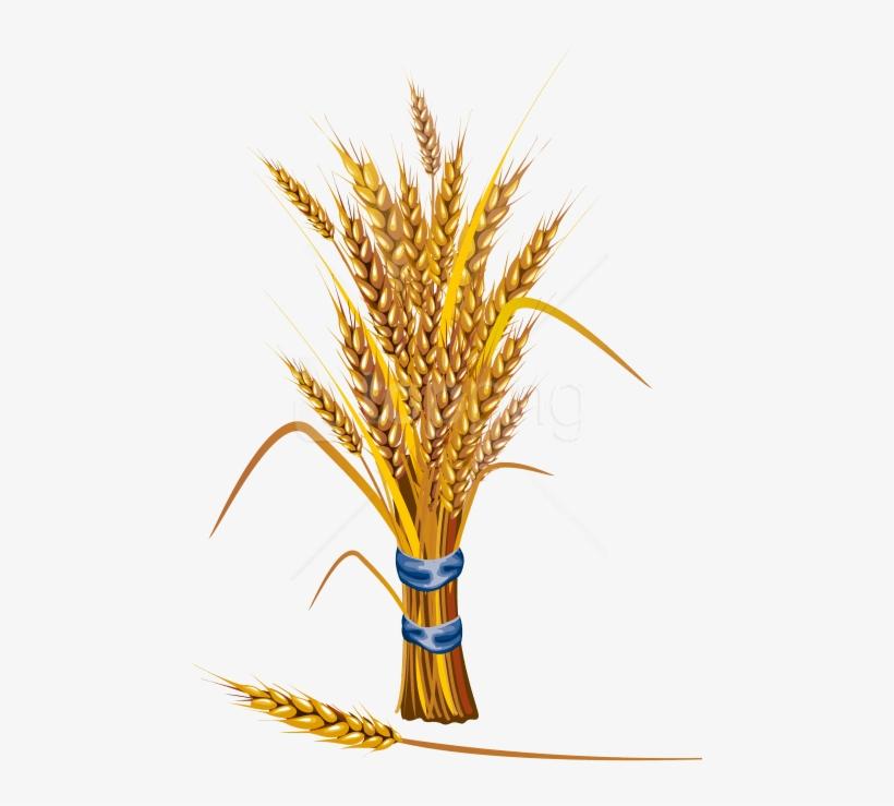 Анимированные, открытки из колосьев пшеницы