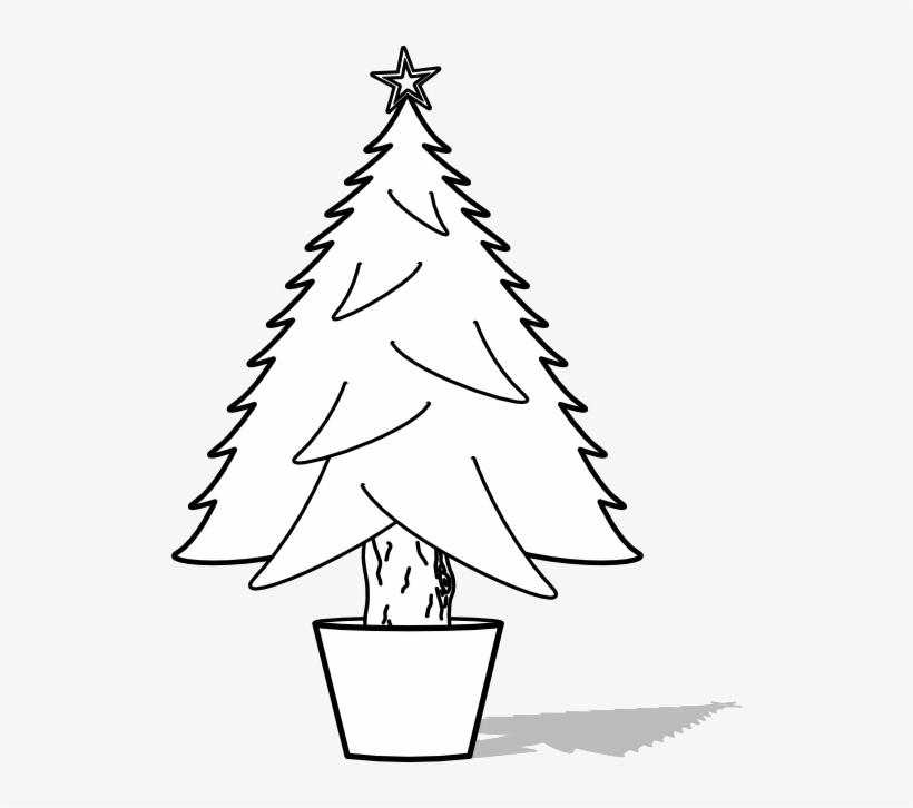 Glossy Christmas Tree Black White Line Art Tattoo Tatoo Christmas