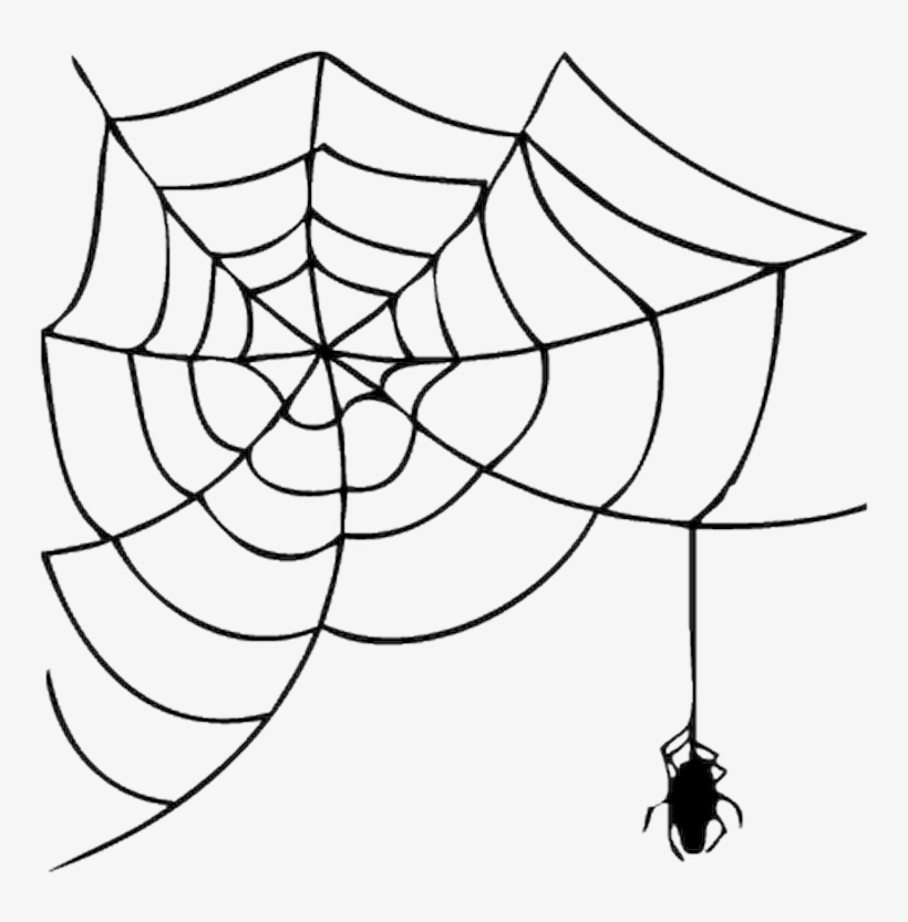 Halloween Spider Clipart.Halloween Spider Web Clipart Png Image Transparent Png Free Download On Seekpng