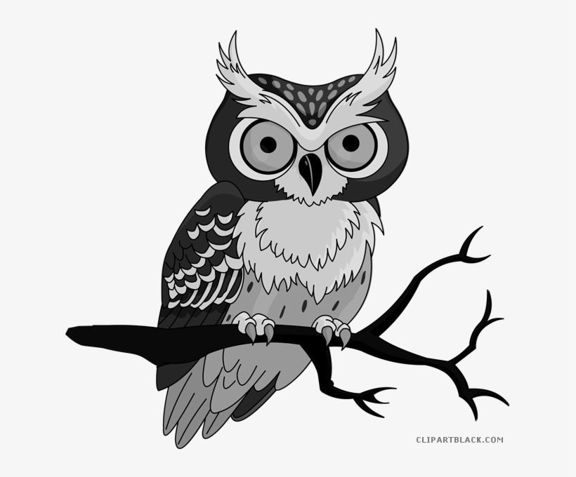 Cute Owl Clipart Clip Art Owl Transparent Png Image Transparent Png Free Download On Seekpng