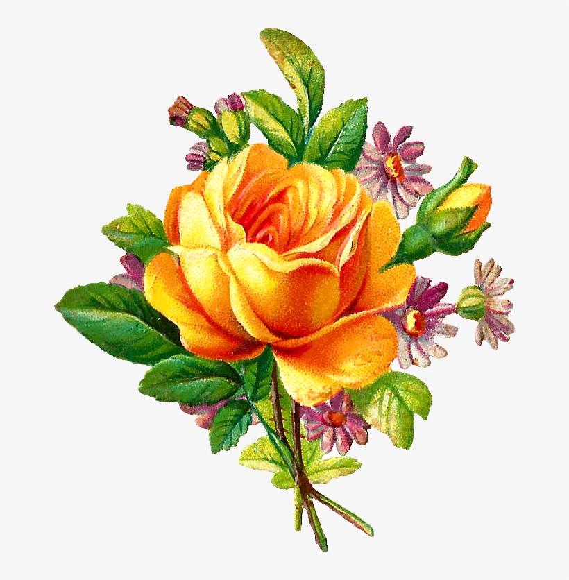 Vine Rose Clip Art Free Best Vine Rose Clip Art On Yellow Rose