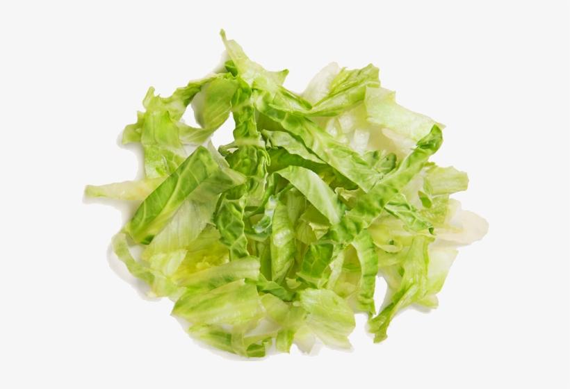 Lettuce clipart. Free download transparent .PNG | Creazilla