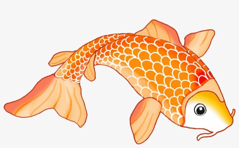 Koi Siamese Fighting Fish Drawing Clip Art Koi Fish Drawing Orange Png Image Transparent Png Free Download On Seekpng