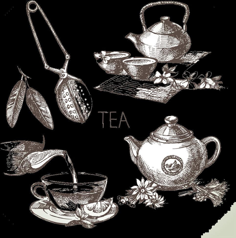 Green Tea Drawing Sketch Green Tea Drawing Full Size Png Download Seekpng