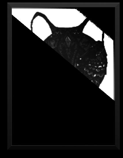 Framed Poster Wolf Sketch Full Size Png Download Seekpng