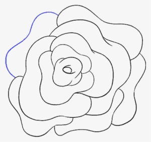 Large Size Of How To Draw Roses Easy Step By Cute Flowers Simple Rose Clip Art Png Image Transparent Png Free Download On Seekpng