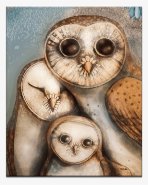 Owls Wallpapers Fondos De Pantalla Buhos Png Image Transparent